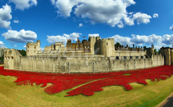 Blood Swept Lands and Seas of Red at the Tower of London