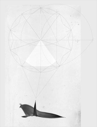 Michele Guido, encephalortus horridus genera pentagono della menancolia _2012/2014 _b/w print with silver salt (Ilfor Multigrade IV FB), dibond, silk-screen printing on glass _cm 50 x 65 x 7 _ed. 1 + 1 ap courtesy Galleria Lia Rumma Napoli/ Milano - Galleria z2o | Sara Zanin, Roma
