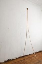 Serena Vestrucci, Pianta d'interno 2011 Compensato di okoumè, tamponi di pennarelli, 300 x 4 x 0,6 cm, 2 giorni Spazio Morris, Milano