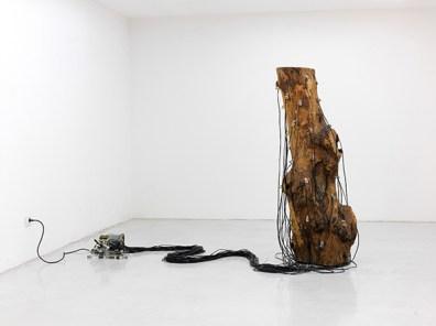 Ad Naturam, Roberto Pugliese, Critici, Ostinati, Ritmici, 2010
