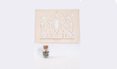 Gianluca Quaglia, Coleotteri, 2015, intagli su tavola entomologica di fine '800, barattolo di vetro, misure intaglio 25.5x33.5cm, barattolo 8.5x6x6 cm Foto Marcella Savino
