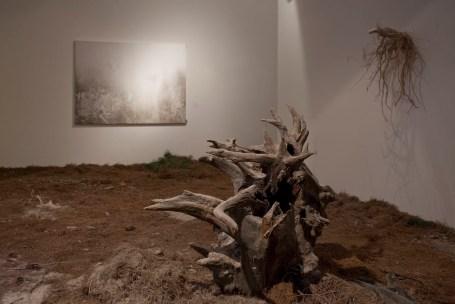 Daniele Giunta, Sternbild, 2010 Courtesy La Giarina, Verona