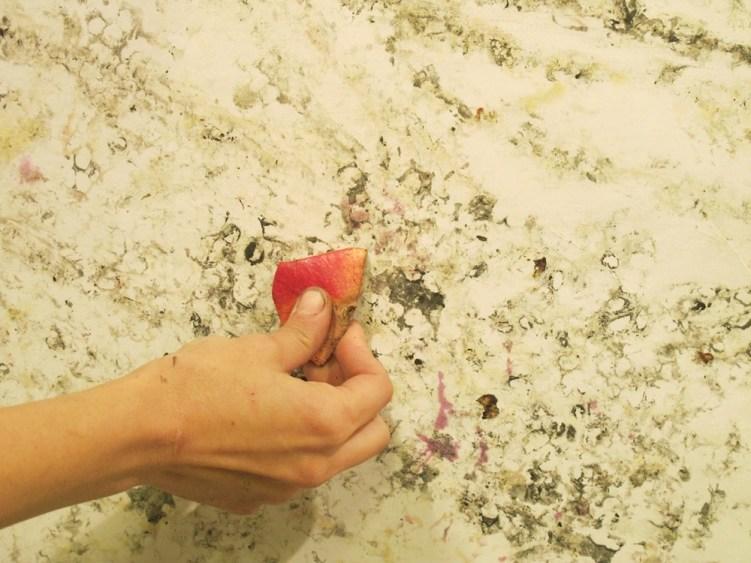 Caterina Sbrana, disegno a buccia di melograno, particolare