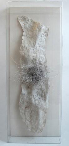 Giacomo Rizzo, Passaggi, resina, cera, legno, plex, gesso, 160x80 cm, 2015 particolare