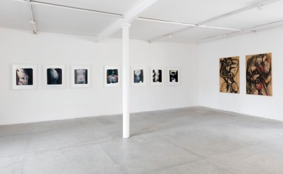 Paolo Gioli, Installation view at Peep-Hole, 2016 From left: Toraci (Thoraxes), 2007, Polaroid 20x24'', lens photograph, Vessazioni (Abuses), 2007, Polaroid 20x24'' and transfers on acrylic, lens photograph, Toraci (Thoraxes), 2010, Polaroid 20x24'', lens photograph, 1° Gruppo delle Creature (1st Group of Creatures), 1963, charcoal on paper Photo ©2016 Andrea Rossetti