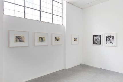 Paolo Gioli, Installation view at Peep-Hole, 2016 From left: Autoanatomie (Self-Anatomies), 1987, Polaroid on silk, acrylic, pencil, paper, Vulva, 2004, black and white print, enlargement of a contact print from a paper negative, Vulva, 2004, black and white print, enlargement of a paper negative exposed by reflection Photo ©2016 Andrea Rossetti