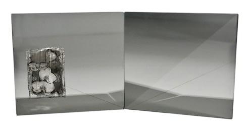 CYMBIDIUM, Gianpaolo Barbieri per Specchio Riflesso