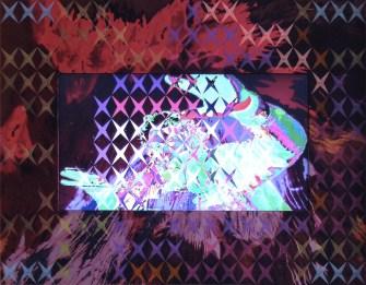 Vincenzo Marsiglia, Hirst Star Interactive, 2010-11, acrilico su seta, lcd, webcam, software, 48x60 cm