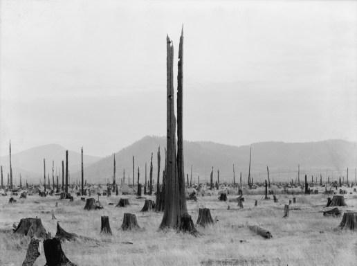 Dorothea Lange, Untitled, United States, 1935-42