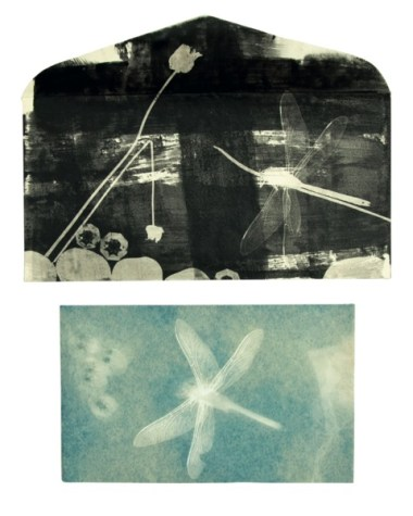 Francesca Della Toffola,Libellule per Man Ray, rayogramma, 22x16 cm, 2016
