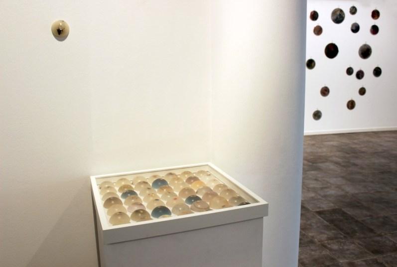 """Angelica Consoli. Persone che abitano la stessa casa, veduta della mostra (serie """"PGR"""" e """"Flame""""), Galleria Melesi, Lecco"""
