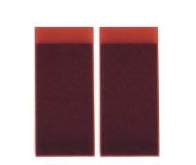 Herbert Hamak, Hostapermrot PV19, 2005, pigmenti e resina su tela, 180x79x7 cm Courtesy Studio la Città, Verona