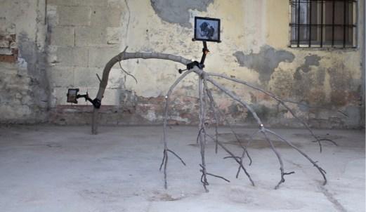 Edoardo Manzoni (Crema 1993), Settembre, 2017, ramo, staffa, tablet, immagine digitale, 360x180x130 cm