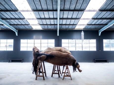 Berlinde De Bruyckere, Aanéén, 2003, polyester, metal, wood, horse skins, 180x300x160 cm Photo credit Ela Bialkowska Courtesy Galleria Continua