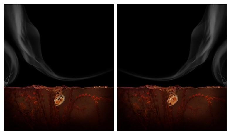 Aqua Aura, La notte gemella, 2017, stampa digitale su carta cotone su alluminio e cornice floccata, 150x260 cm (dittico). Courtesy: l'artista