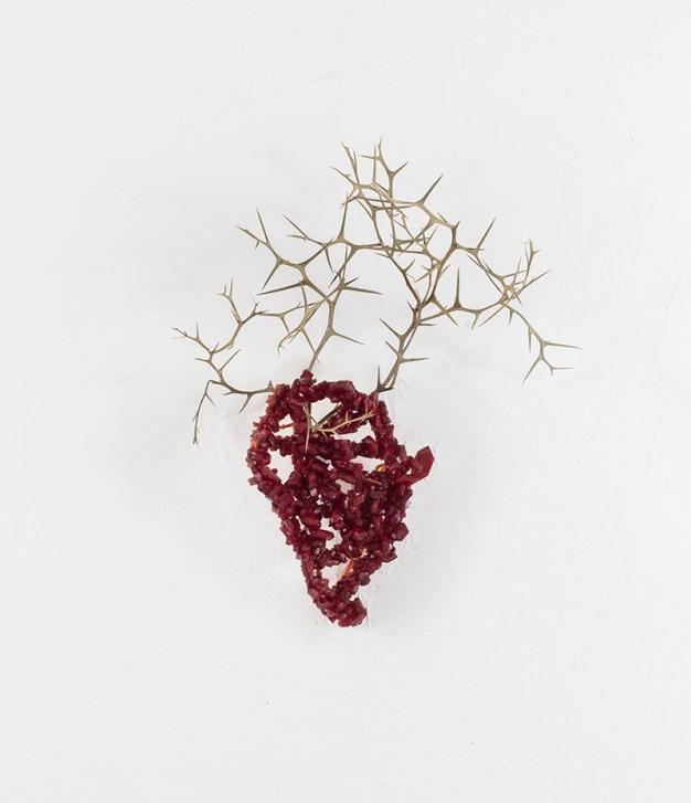 Francesca Romana Pinzari, Cuore di cervo, 2018, cristalli di ferricianuro su corda e spine, cm 70x60