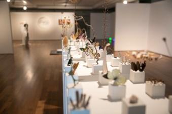 Alice Padovani, Solid, 2018, installazione, gesso e inclusioni di materia organica, dimensioni ambientali, courtesy Le Dame Art Gallery - ph. Cristina Patuelli
