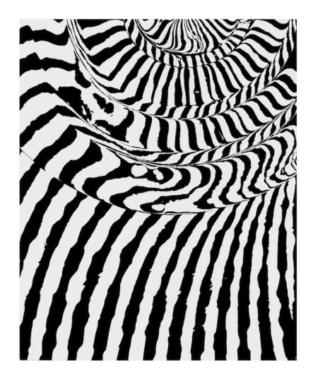 Franco Grignani, Grafia spiraliforme e rigatura parallela, 1963, sperimentale ottico ai sali di bromuro d'argento, 29.8x24.1 cm Courtesy 10 A.M.ART, Milano