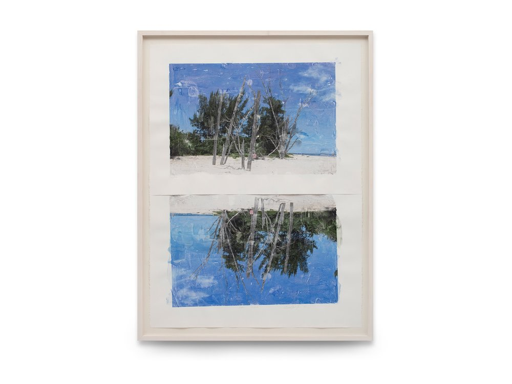 Marìa Magdalena Campos- Pons, CAPTIVA - REFLECTION, 2016, 117,5x86,5 cm tecnica mista su carta Arches