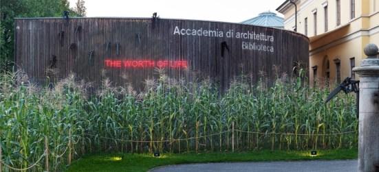 Koen Vanmechelen. The worth of life 1982-2019, veduta della mostra © Enrico Cano, Teatro dell'architettura Mendrisio, Università della Svizzera italiana, Architetto: Mario Botta
