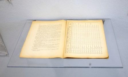 Risultati delle ricerche sull'elettroshock effettuato su 46 pazienti affetti da schizzofrenia effettuati fino al 1949 dal dott. Balestrazzi presso l'Ospedale psichiatrico di Novara (Libretto originale rinvenuto in ex manicomio)