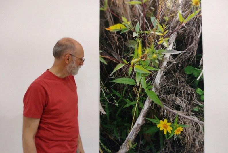Stefano Arienti con Due fiori gialli (part.), 2020, giugno 2021 Courtesy Artista e Galleria Christian Stein, Milano Foto di Marcela Martinas