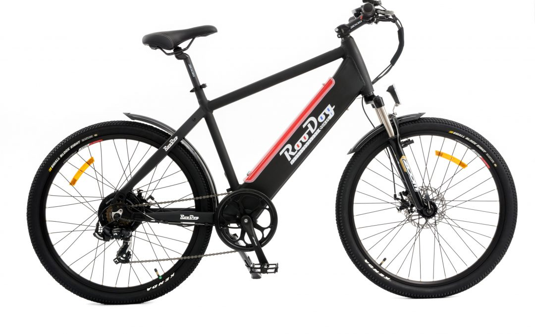 RooDog Avatar Electric Bike – eMTB