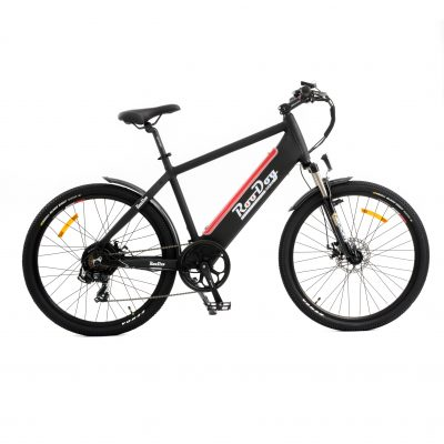 RooDog Avatar electric bike -eMTB