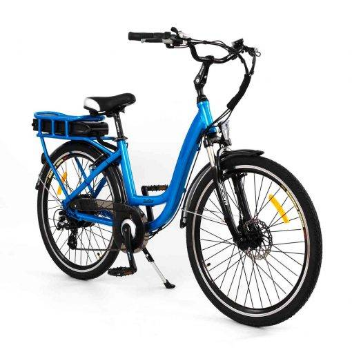 RooDog Chic ebike in blue