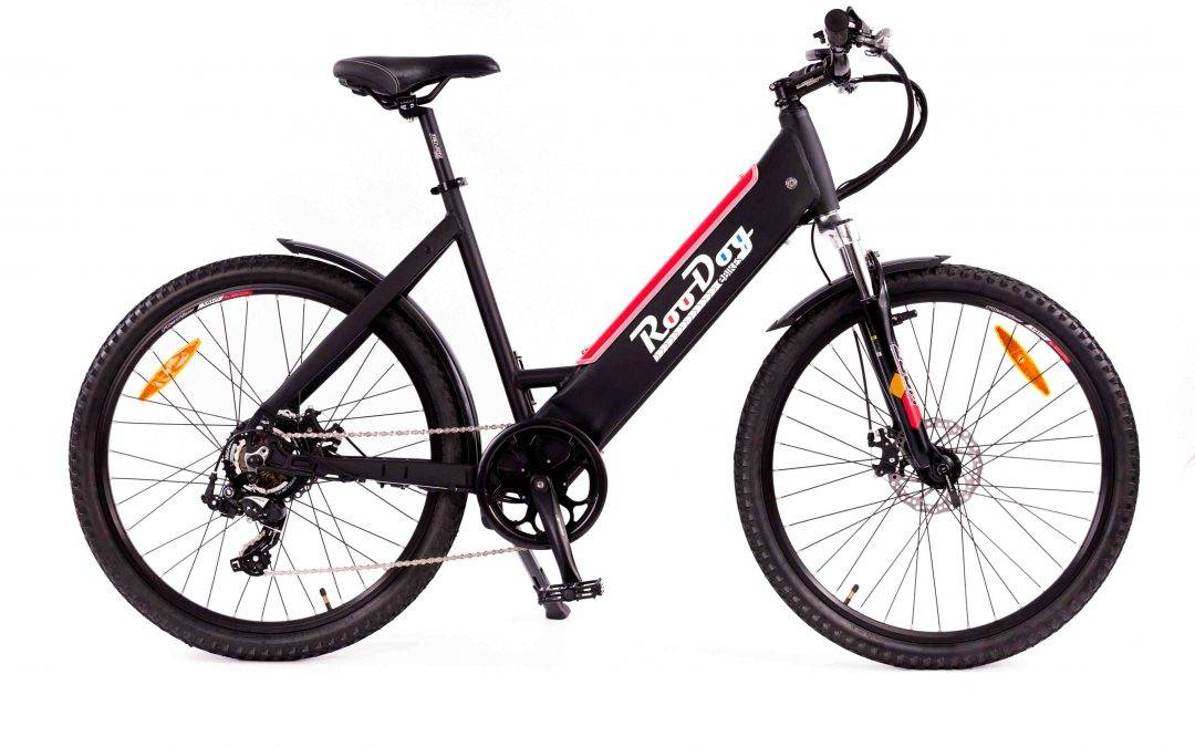 RooDog Avatar Electric Bike Step Through- eMTB