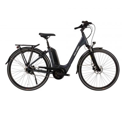 Raleigh Motus Tour Low Step Ebike