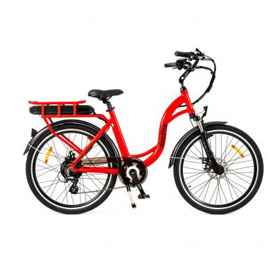 RooDog Chic Grande Low Step Ebike