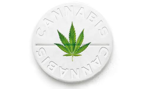 "alt=""Espondilite e Cannabis"""