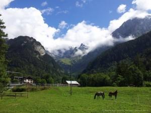 suisse-geobiologie-1