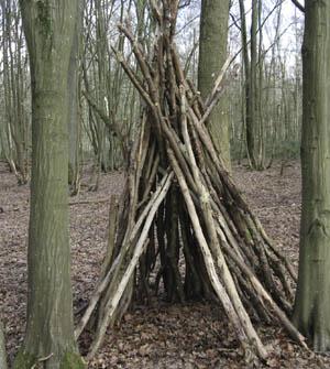 cabanes des bois esprit cabane