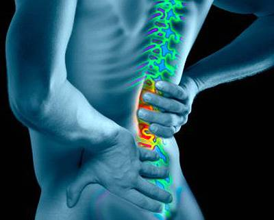 Man with enhanced spinal column, rear view (Digital Composite)
