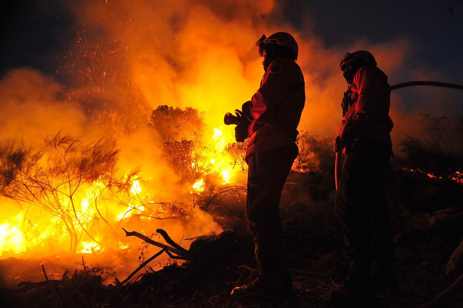 Resultado de imagem para incêndios