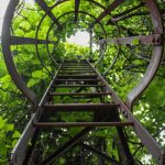How to Structure a College Application Essay: Climb this Ladder!