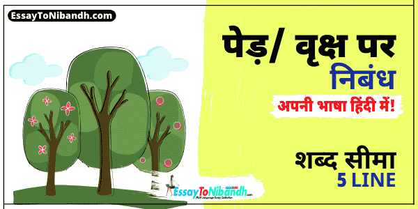 5 Lines On Tree In Hindi For Class 1 or 2