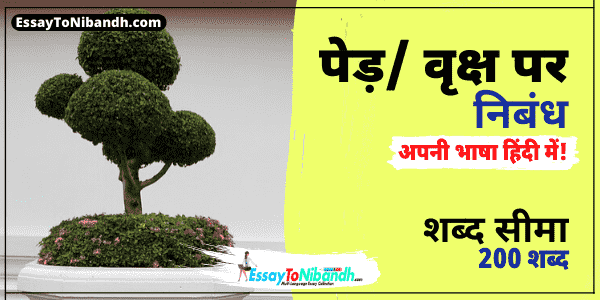 Essay On Trees In Hindi 200 Words