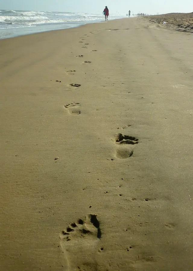 Praia de Atalaia - Aracaju (Foto: Esse Mundo É Nosso)