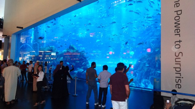 Dubai Aquarium & Underwater Zoo - The Dubai Mall e Show de Águas Dançantes de Dubai (Foto: Esse Mundo É Nosso)