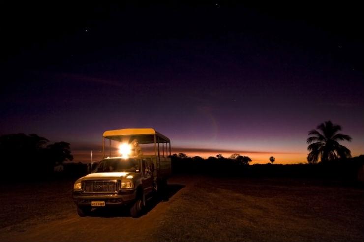 O que fazer no Pantanal (Foto: Divulgação/Fundação Turismo)