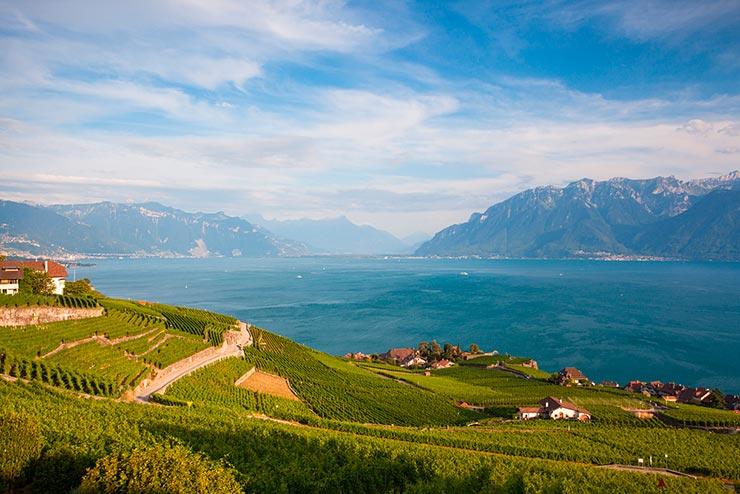 Região de Lavaux, Suíça (Foto via Shutterstock)