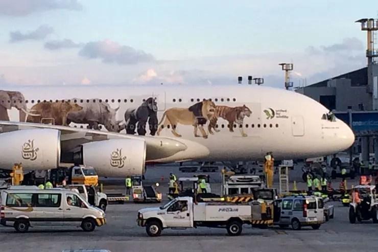 Maior avião de passageiros, A380 no Brasil (Foto: Cortesia - Nicolas Gabriel/@niicoollaaas)