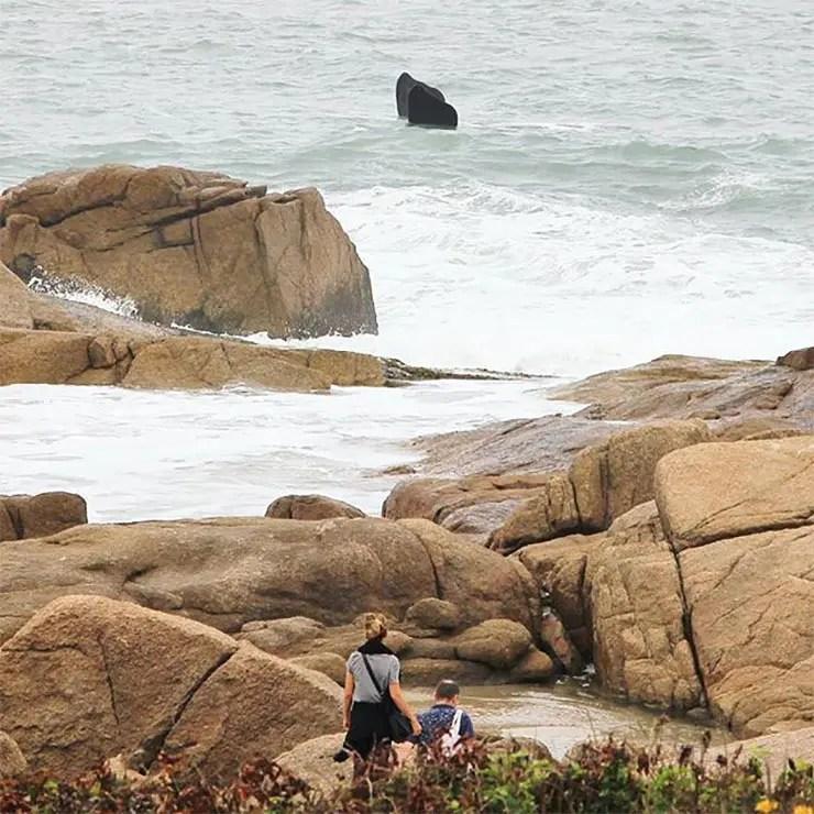 Baleias em Santa Catarina (Foto: Cortesia/Átila Ximenez)
