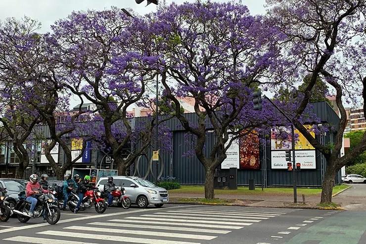 O que fazer em Buenos Aires com chuva: Museu Nacional de Belas Artes de Buenos Aires (Foto: Esse Mundo é Nosso)