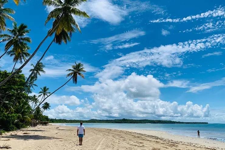 Coqueiral na Praia do Bainema, em Boipeba