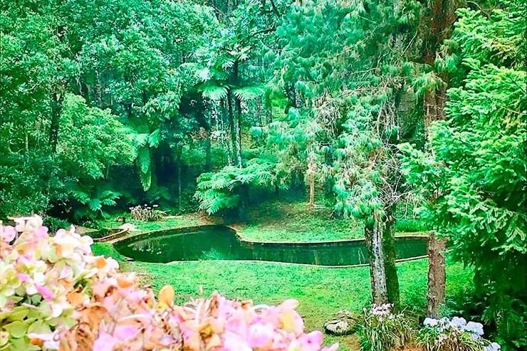 Parque Oschin (Foto: Reprodução/Facebook do parque)