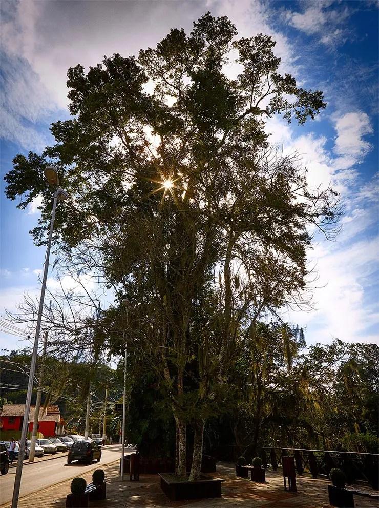 Parque Recanto do Américo em Guararema (Foto: Secretaria de Turismo de SP/Ken Chu - Expressão Studio)